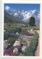 Environs De Briançon : Col Du Lautaret, Jardin Alpin (cp Vierge N°8012 Agep) - Briancon