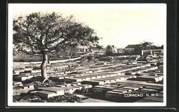 AK Curacao, Old Jewish Cemetery, 17th Century - Curaçao