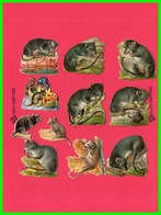 Neuf Chromos Découpis Rats/Mulots (recto Verso) - Animales