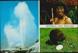 MBK Rotorua, New Zealand. Postalisch 1994 Nach Düsseldorf. Centenary Of Cricket 1895-1995. 2 Scans - Neuseeland