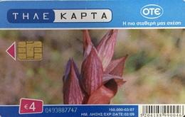 Paco \ GRECIA \ Chip OTE X2012 \ Serapias Orientalis Orchid \ Usata - Griekenland