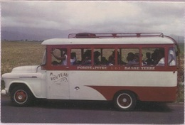 CPM - GUADELOUPE - TRANSPORT PUBLIC (bus B.Plan) - Photo Moser - Edition Delroisse - Autres