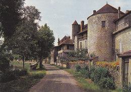 89 Noyers Sur Serein Vieilles Tours (2 Scans) - Noyers Sur Serein