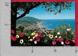 CARTOLINA VG ITALIA - ANDORA (IM) - Panorama Da Ponente - 10 X 15 - ANN 1977 - Imperia