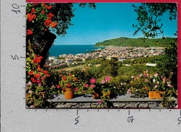 CARTOLINA VG ITALIA - DIANO MARINA (IM) - Panorama - 10 X 15 - ANN 1982 - Imperia