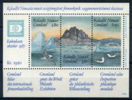 90677) Groenlandia 1987 Mi. Bl. 1 Foglietto 100% HAFINA '87 -MNH** - Groenlandia