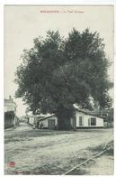 BISCAROSSE Le Vieil Ormeau - Voyagée 1912 - Bon état Ref. LMV - Biscarrosse