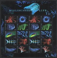 "USA- Bioluminescent Life ""Full Sheet"" - United States"