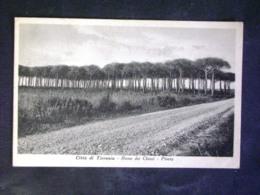 TOSCANA -PISA -TIRRENIA -F.P. LOTTO N°22 - Pisa