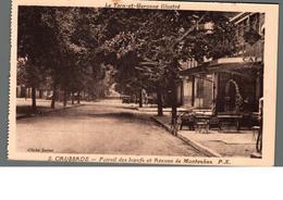 Cpa 82 Caussade Foirail Des Bœufs Et Avenue De Montauban Déstockage à Saisir - Caussade