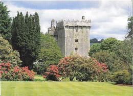 Blarney Castle - Château - Cork