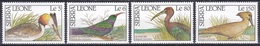 Sierra Leone 1990 Tiere Fauna Animals Vögel Birds Oiseaux Aves Uccelli Haubentaucher Hammerkopf, Aus Mi. 1455-2 ** - Sierra Leone (1961-...)