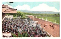 Mexico Tiajuana , Horse Race Track - Mexico
