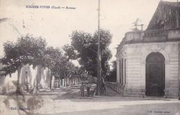 AIGUES-VIVES - Avenue - Aigues-Vives