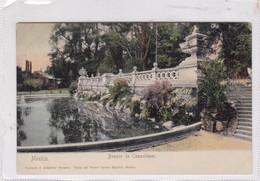 MEXICO. BOSQUE DE CHAPULTEPEC. RUHLAND & AHISCHIER SUCESOR. CIRCA 1910s NON CIRCULEE - BLEUP - México