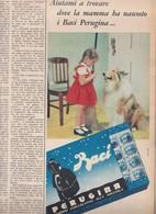 (pagine-pages)PUBBLICITA' PERUGINA  Tempo1960/12. - Altri