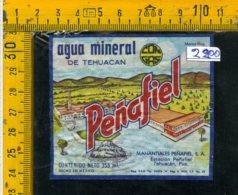 Etichetta Acqua Minerale Estera Penafiel Mexico - Etichette