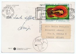 FAUNE AFRICAINE - LE LION / WITH COTE D'IVOIRE THEMATIC STAMP - Costa D'Avorio