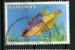 Bahamas 1988 $1.00 Hogfish Issue #615a - Bahamas (1973-...)