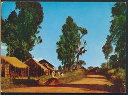 °°° 13106 - ETHIOPIA ETIOPIA - SCENERY PAYSAGE WONDO - 1967 With Stamps °°° - Etiopia
