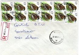 BELGIUM,    Letter,    Birds    /    BELGIQUE,    Lettre,   Oiseaux,   1996 - Moineaux