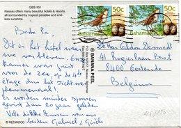 BAHAMAS,    Picture  Postcard,    Birds     /    BAHAMAS,    Carte Postale,   Oiseaux,   2002 - Vögel