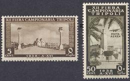 TRIPOLITANIA - 1938 - Lotto Di Due Valori Nuovi MNH: Yvert 161 E Posta Aerea 80. - Tripolitania