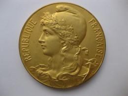 Médaille Concours Du Progrès Paris 1897 Produits Nouveaux Par Hercule - Autres