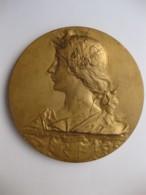 Médaille Concours Exposition Du Progrès Bordeaux 1897 Par Rivet. - Autres