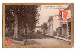 34842-ZE-33-St-ANDRE-de-CUBZAC-Les Allées Du Champ De Foire - Autres Communes