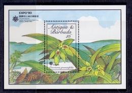 Orchideen – Antigua Und Barbuda (105-116) - Orchids