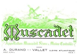 Etiket Etiquette - Vin - Wijn - Molen Moulin - Muscadet - Durand - Vallet - Windmills