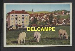 DD / 71 SAÔNE ET LOIRE / LA CLAYETTE / VUE GENERALE - France