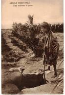 AFRICA ORIENTALE - UNA ARABETTA AL POZZO - Eritrea