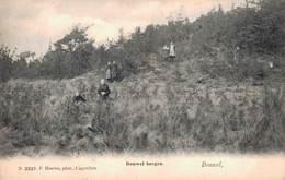 Bouwel Bergen - Grobbendonk