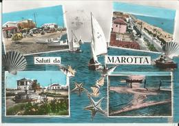 MAROTTA(PESARO-URBINO) VEDUTINE  -FG - Pesaro