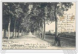 ARLON ..-- DVD 11340 . Route De LONGWY . 1906 Vers FLORENVILLE ( Mr Xavier BRADFER , Télégraphiste ) .  Voir Verso . - Arlon