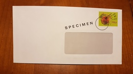PAP SPECIMEN CELEBRATION AN 2000 ENVELOPPE GRANDE FENETRE - Unclassified