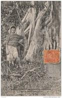 L32- NOUVELLE CALEDONIE - BANIAN ( SA BLANC ) PRODUCTEUR DE CAOUTCHOUC  - (ANIMÉE) - Nouvelle-Calédonie