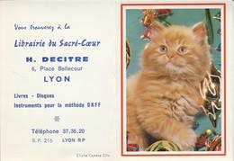 Calendriers : Librairie Du Sacré-coeur - H. DECITRE : Chat - ( 2 Volets ) 1971 - Calendriers