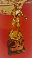 OFFICER MIDDLE WEIGHT RUNNER UP  - 1933 - Boxing