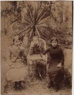 FILLES -LARRIVE-CARLA-CASTAGNE  Photo Sépia Année 1914 Venant D'un Album Du TARN 16cmX 12cm N°1 - Places