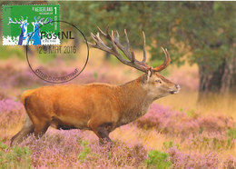 D35958 CARTE MAXIMUM CARD 2016 NETHERLANDS - CERF STAG HIRSCH CP ORIGINAL - Gibier