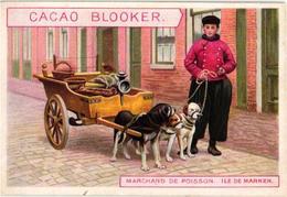 8 Chromo Cards C1890 Cacao Chocolade Chocolate Blooker Eiland Ile MARKEN Island Holland Hindeloopen Dog Cart - Chocolate