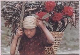 CPM - NEPAL - Thakali Girl ... - Photo B.M.Chettri - Nepal