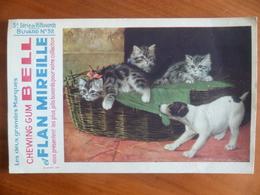 Buvard  Chewing-gum  BELL Et Flan Mireille  N° 38 - Buvards, Protège-cahiers Illustrés