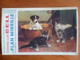 Buvard  Chewing-gum  BELL Et Flan Mireille  N° 39 - Buvards, Protège-cahiers Illustrés