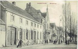 BASSEVELDE - Assenede - Dorpstraat - Assenede