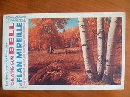 Buvard  Chewing-gum  BELL Et Flan Mireille  N° 45 - Buvards, Protège-cahiers Illustrés