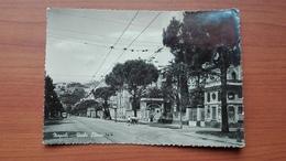 Napoli - Viale Elena - Napoli